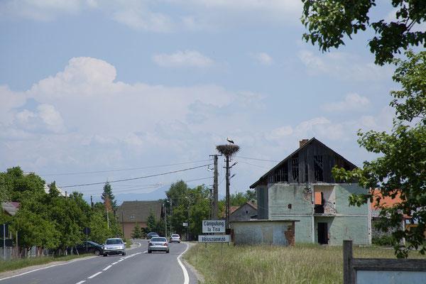31.05. Storchennester sind im ganzen Land sehr häufig.