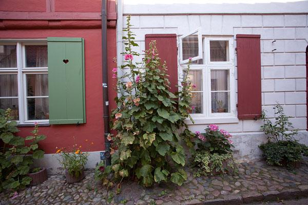 23.7. Stralsund - Badstüberstraße