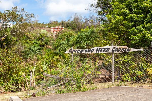 Besuch im Spice and Herb Garden