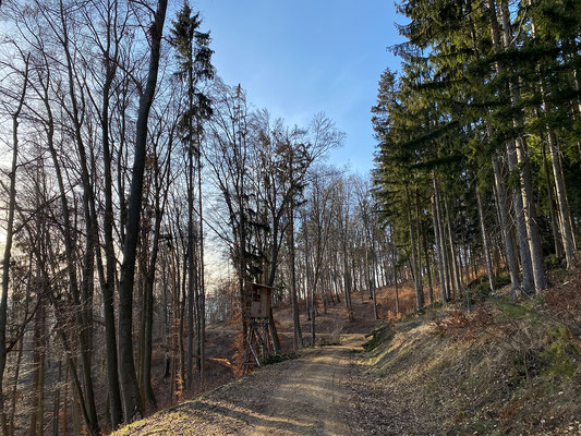 18.02. Johann und Paul - Buchkogel