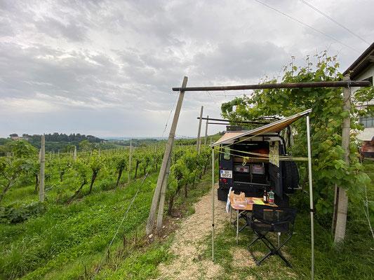 22.5. Wir übernachten am Weingut Azienda Agricola Vitacchio Emilio bei Breganze - idyllisch und sehr zu empfehlen!