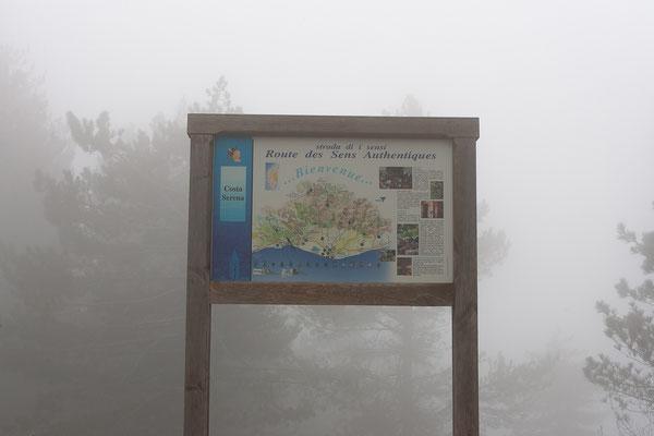 26.5. Auf der Weiterfahrt erwartete uns am Col de Sorba Nebel.