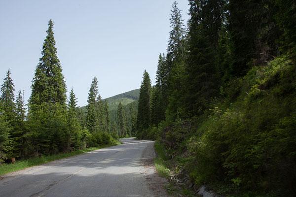 17.6. Über den Prislop - Pass gelangen wir von der Bucovina in die Maramureş.