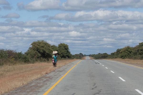 24.4. Von Rundu nach Divundu führt die Straße schnurgerade ca. 220 km nach Osten.