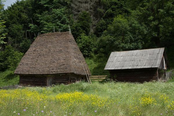 16.06. Typisch für das Apuseni-Gebiet sind die Motzen-Häuser. Die Motzen, wie die Bauern der Region genannt werden, bewirtschaften die am höchsten gelegenen ganzjährig bewohnten Höfe Rumäniens.