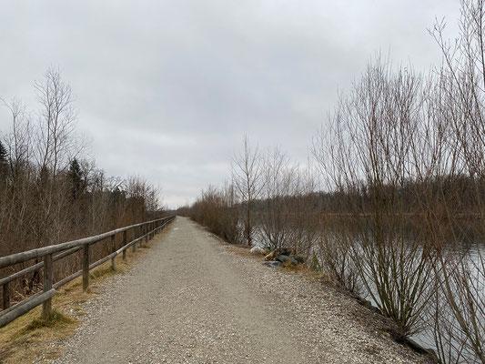 24.1. Entlang der Mur: Auwiesen - Murkraftwerk Gössendorf - Gasrohrsteg - Auwiesen