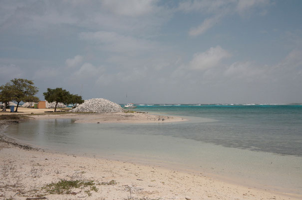 Lac Bay ist einer unserer Lieblingsorte auf der Insel