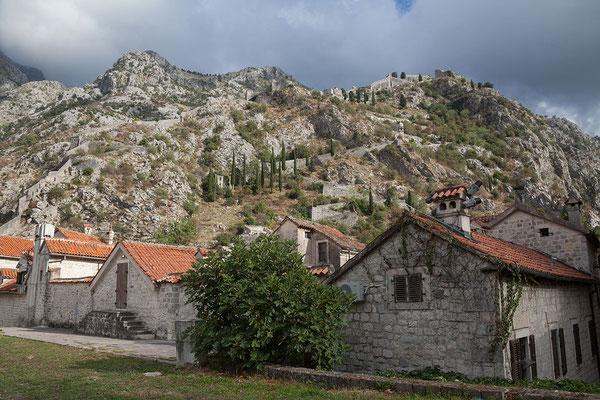 18.9. Kotor - Von der Stadtmauer haben wir einen tollen Blick auf die Altstadt.
