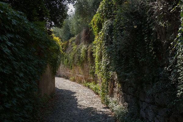 23.09. Verona - Unterwegs zum Castel San Pietro