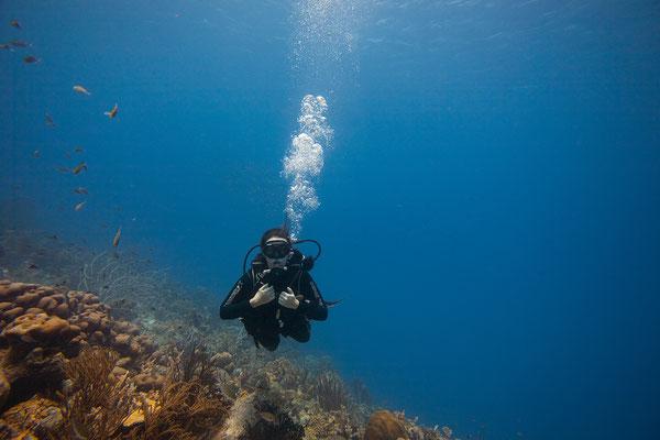 """Tori's Reef"" - Kerstin"