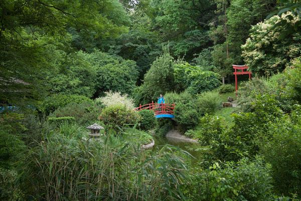 17.06. Dersehenswerte Botanische Garten von Cluj ist 14 Ha groß.