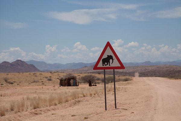 23.2. Elefanten