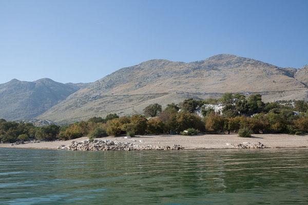 16.9. Murići, wir unternehmen einen 1stündigen Bootsausflug mit Hasan.