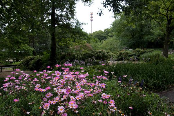 25.07. Planten un Blomen