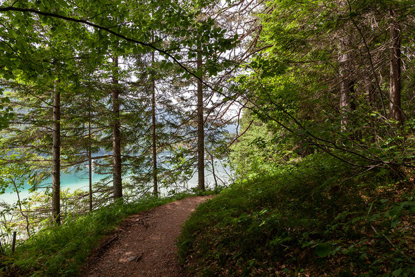 Spaziergang von der Kleinen Steinwand zum Ronacherfels
