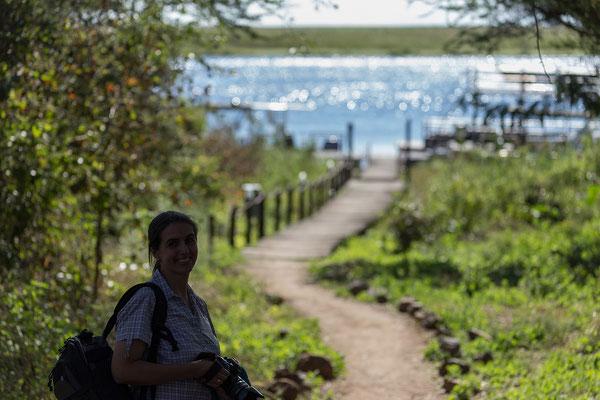 Auf dem Weg zur Nachmittags-Bootstour an der Riverfront des Chobe NP