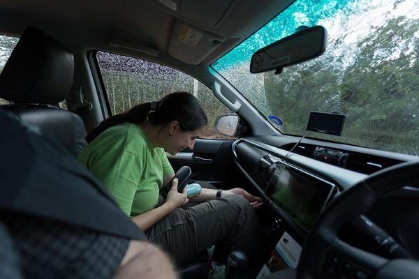 20.4. Wir beziehen unsere Campsite in Waterberg Wilderness. Die Regenzeit lässt grüßen.