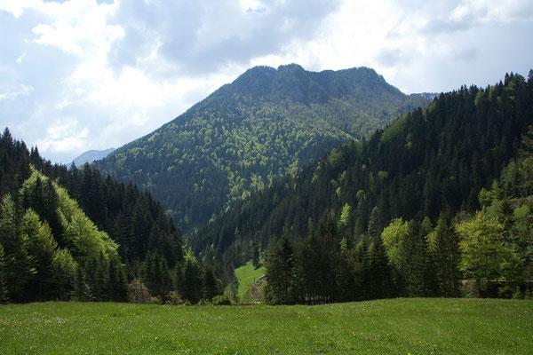 Savinja Tal - Panoramastecke