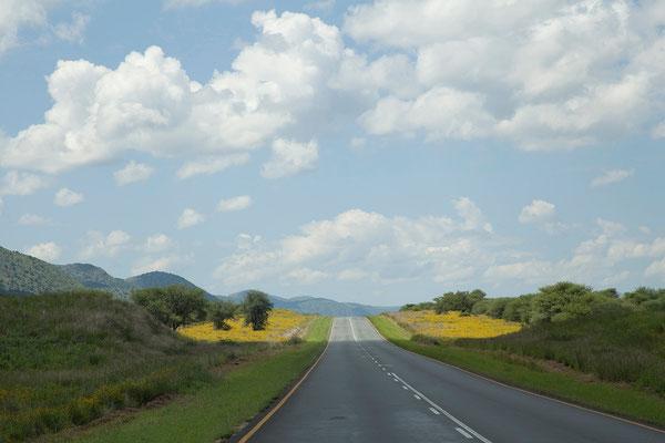 29.2. Auf der Fahrt nach Windhoek