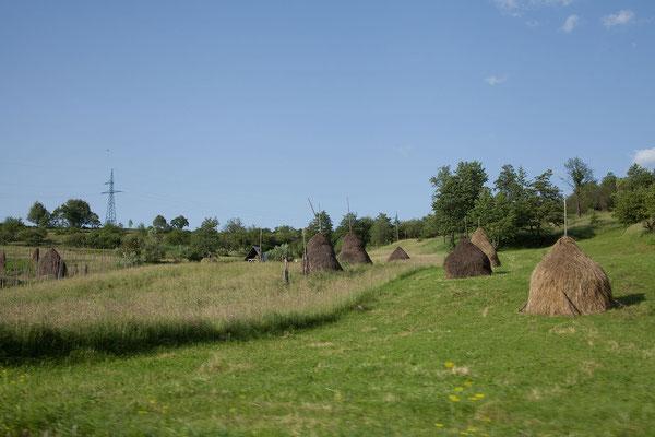 17.6. Wie in der Bucovina, ist auch die Landschaft der Maramureş äußerst reizvoll.