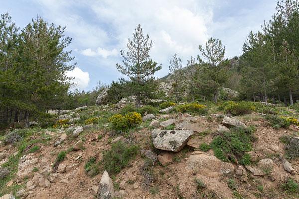 03.06. Schotterstrecke oberhalb des Calauccia Stausees