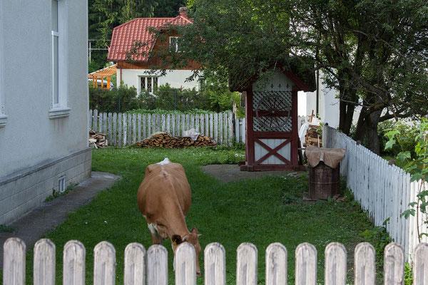 16.6. Fundu Moldovei
