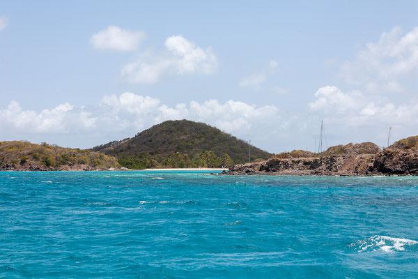 Erneut besuchen wir den Tobago Cays Marine Park