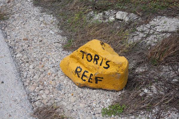 """Tauchspot """"Tori's Reef"""" - Die einzelnen Tauchspots sind mit gelben Steinen markiert."""