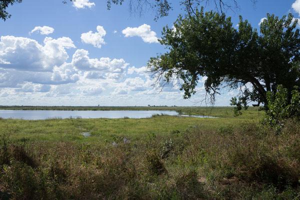 04.05. Chobe NP - Linyanti Campsite; unsere Campsite CL 1 bietet einen tollen Flussblick.