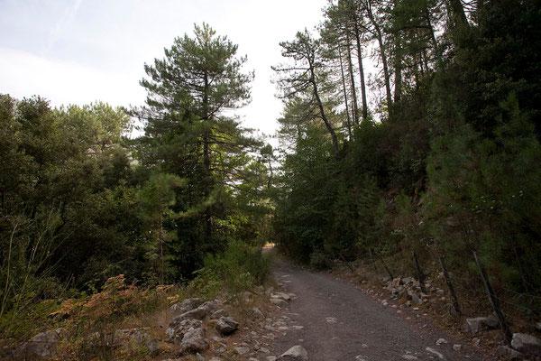 03.09. Wanderung im Manganello Tal