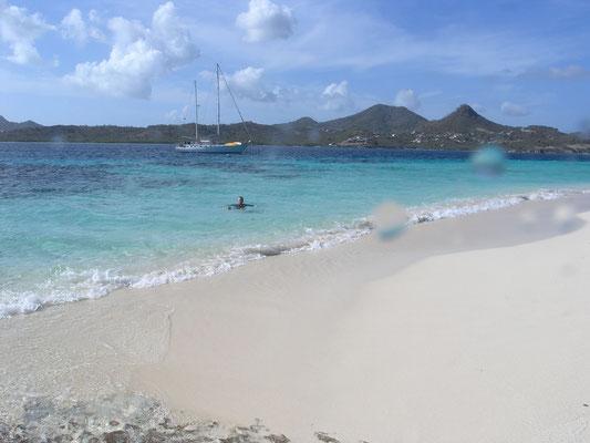 Wir sind von Saline Island nach White Island geschnorchelt.