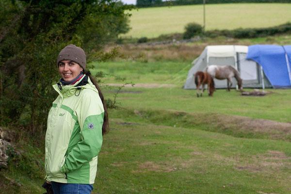 11.09. Unser Campingplatz auf der Runnage Farm, Dartmoor
