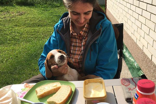 11.9. Frühstück mit dem netten Hund der Familie.