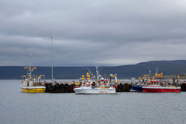 9.8. Westfjorde - Hólmavík
