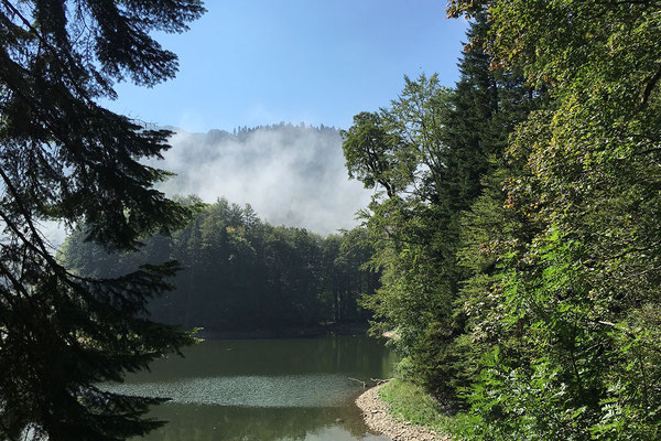 13.9. Nationalpark Biogradska Gora