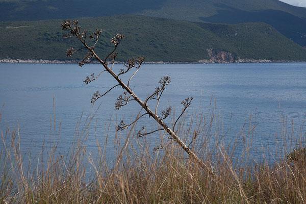 20.09. Das Kap Oštro ist der südlichste Punkt Kroatiens.