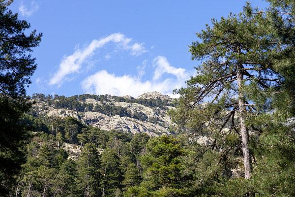 1.6. Nach dem schönen Aufenthalt bei den Piscines Naturelles d'Aitone spazieren wir zurück zum Auto.