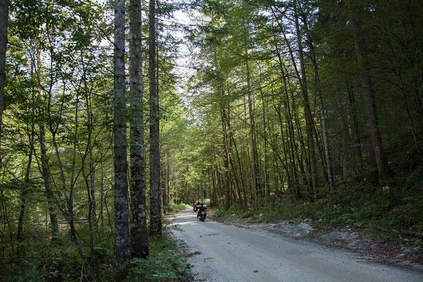 Nebenstrecke über Mojstrana nach Kranjska Gora. Unterwegs fallen uns die vielen Motorradfahrer auf. Irgendwann fällt uns ein, dass an diesem Wochenende am Faaker See das Harley-Treffen stattfindet.