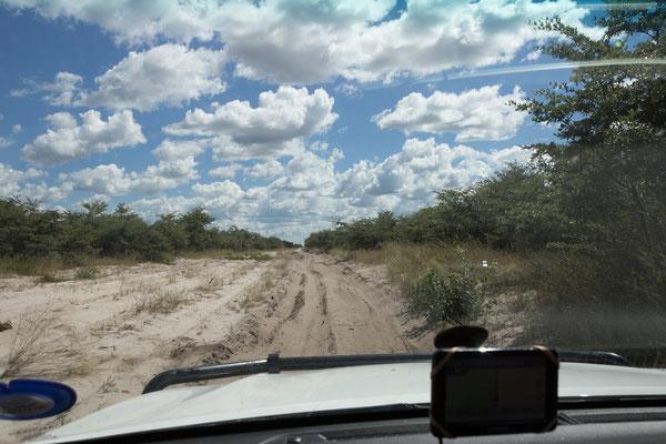 04.05. Chobe NP; über weite Strecken ist der Sand auf der Pad ziemlich tief.