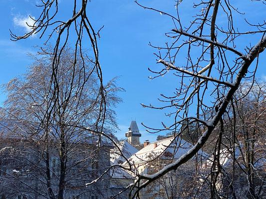 29.12. Stadtpark - Spaziergang