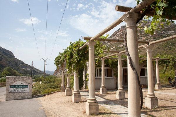 01.09. In der Domaine Pastricciola bei Patrimonio verkosten wir sahr guten Muscat und nehmen ein paar Flaschen mit.