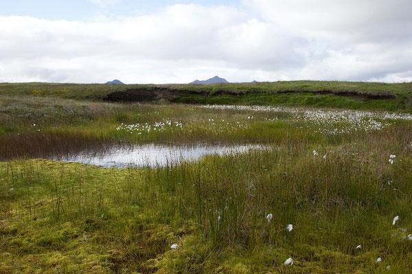 31.7. Möðrudalur - der höchst gelegene bewirtschaftete Hof Islands