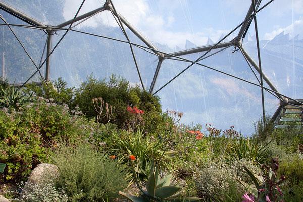 10.09. Eden Project - die Kuppeln bestehen aus einem besonders leichten, transparenten Kunststoff