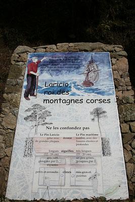 1.6. Spaziergang zu den Piscines Naturelles d'Aitone