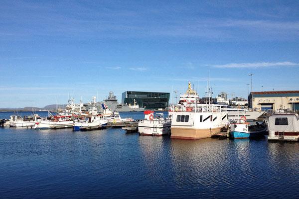 13.8. Reykjavík - Hafen