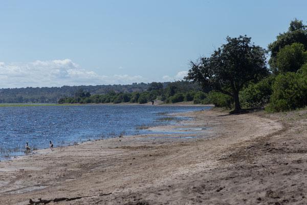 03.05. Chobe NP (Riverfront)