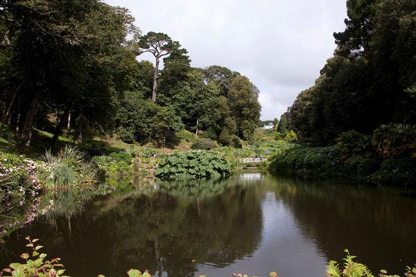 09.09. Trebah Gardens