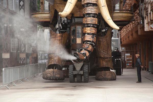 19.09. Machines de l'ìle - Der große Elefant ist 12m hoch, 8m breit und 21m lang. Er wiegt 48,4 Tonnen.
