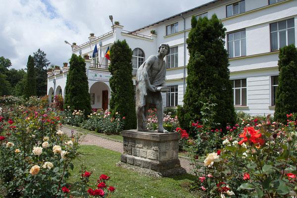 17.06. Cluj: Botanischer Garten