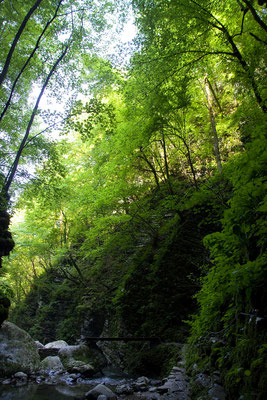Rückweg vom Koziak Wasserfall